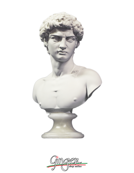 David by Michelangelo - bust with alabaster base - 10.6 in. (27 cm) or 12.6 in. (32 cm)