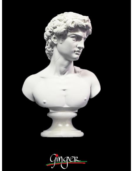 David di Michelangelo busto con base alabastro - 27 cm o 32 cm